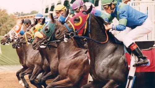 del-mar-racetracks