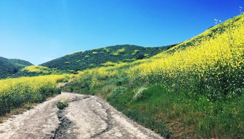 patriot-trail-hike