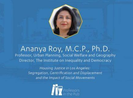 ananya-roy-pip-image