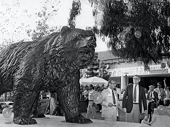 Bruin bear statue