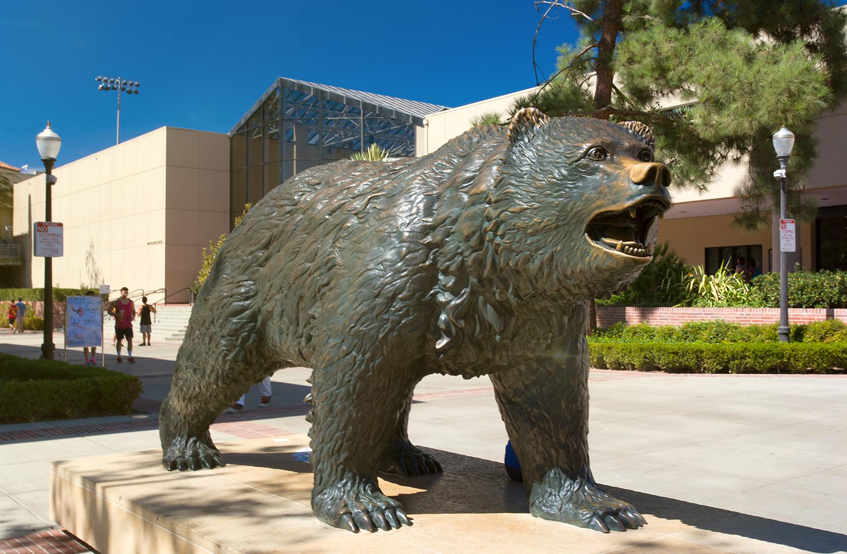 UCLA Bruin Bear Statue on a sunny day. A representation of UCLA Alumni.