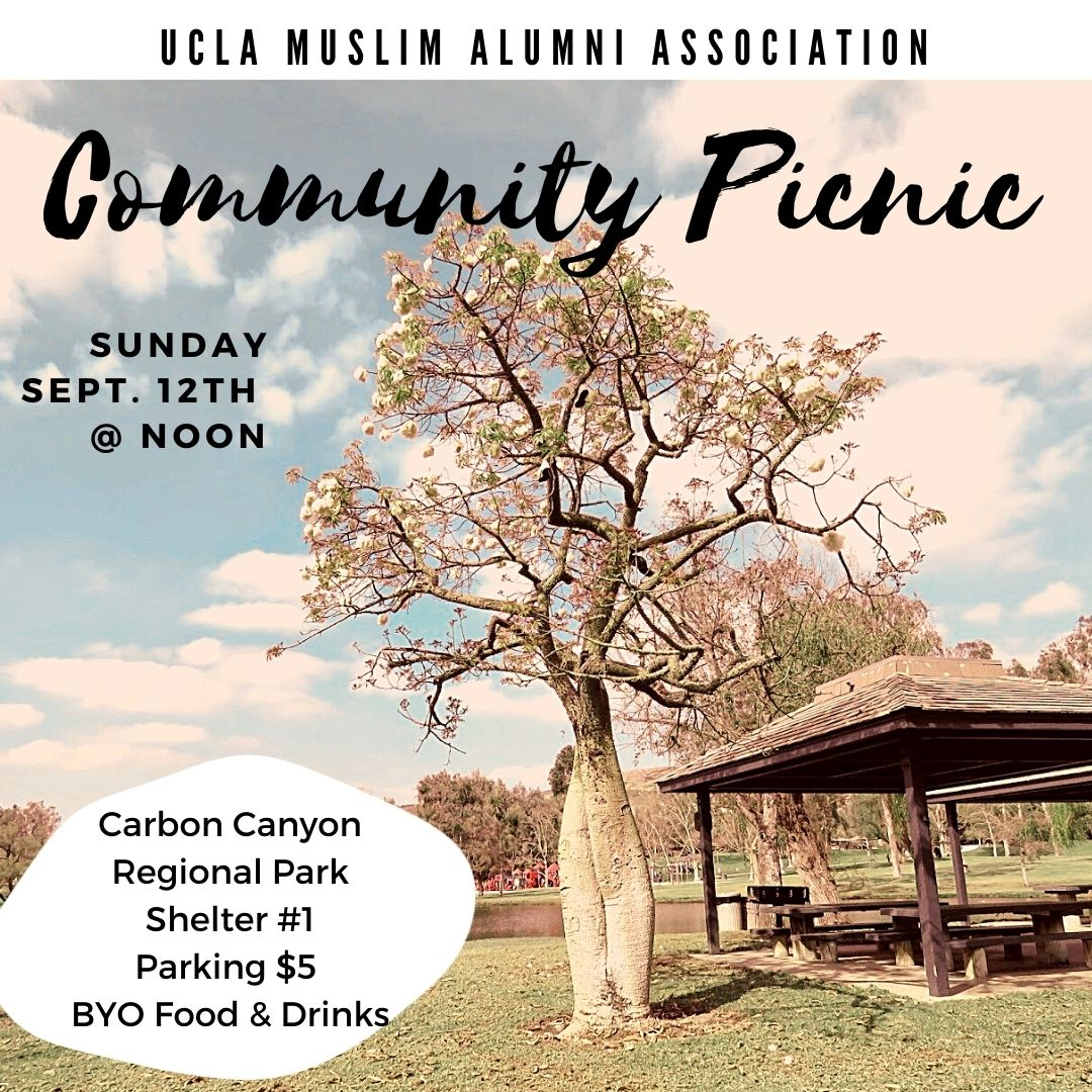 UCLA Muslim Alumni Association Community Picnic